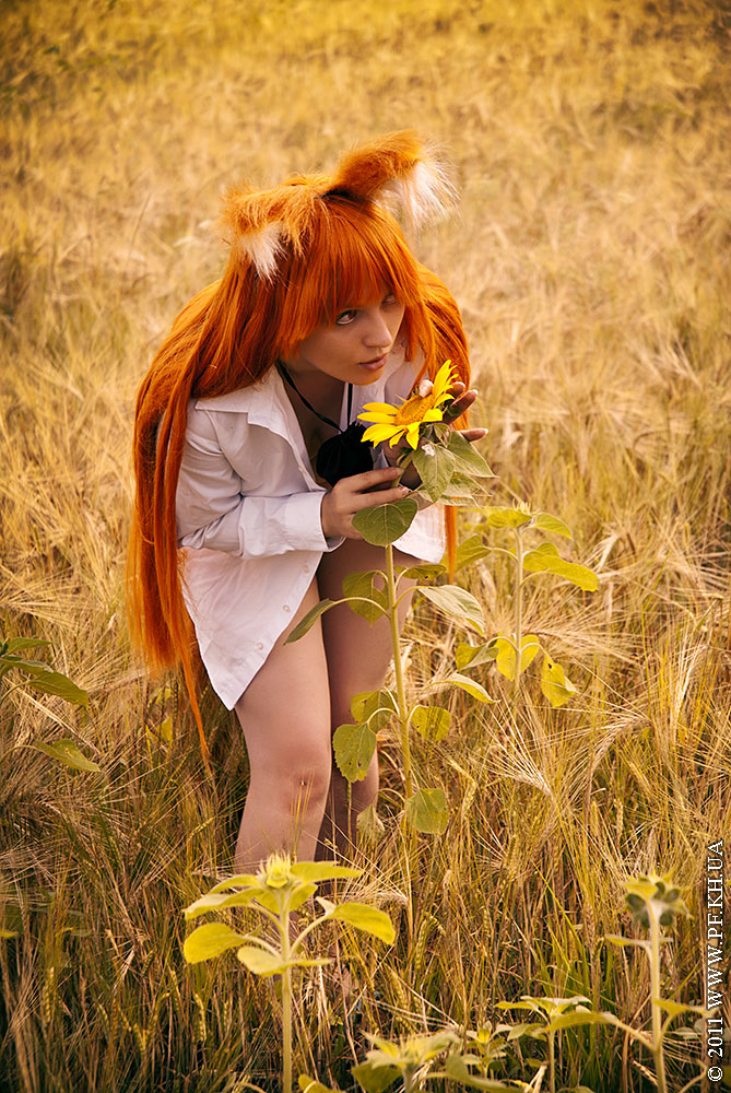 Horo, Spice and Wolf, Cosplay